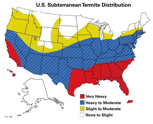 Why Should You Be Worried About Termites Ledfords Pest Control - Us termite map